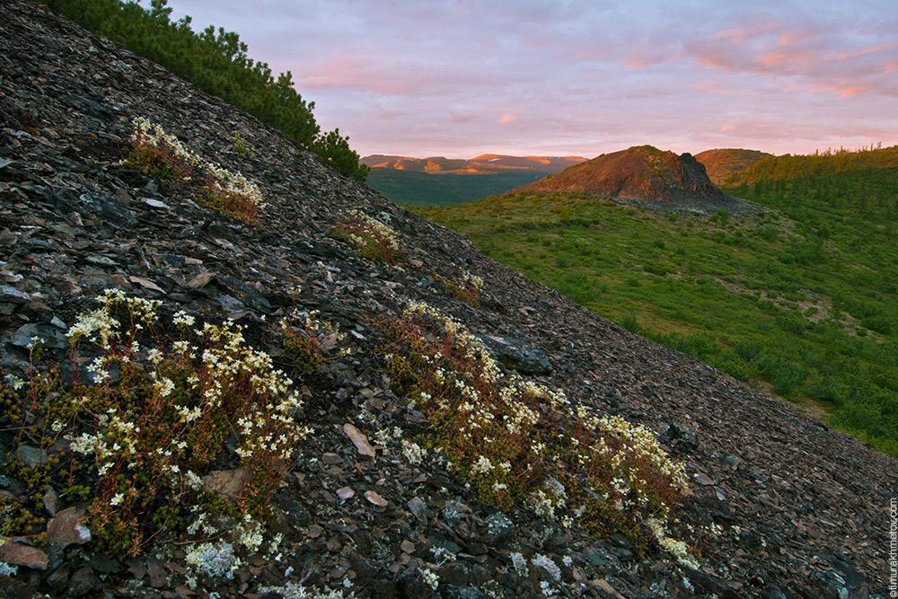 гора Острые Сопочки
