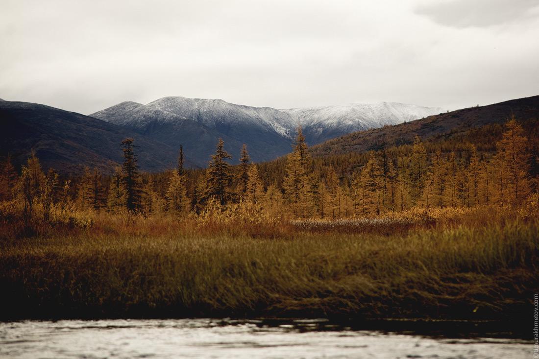 Первый снег на горах
