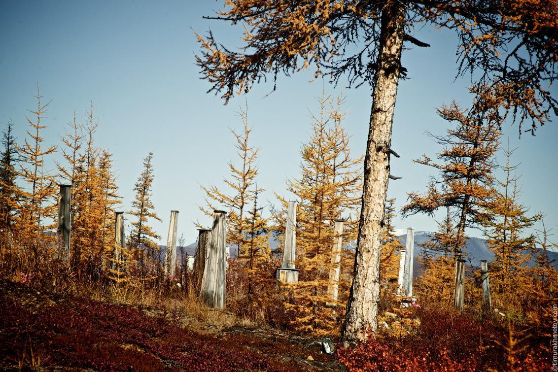 Кладбище напротив села Илирней