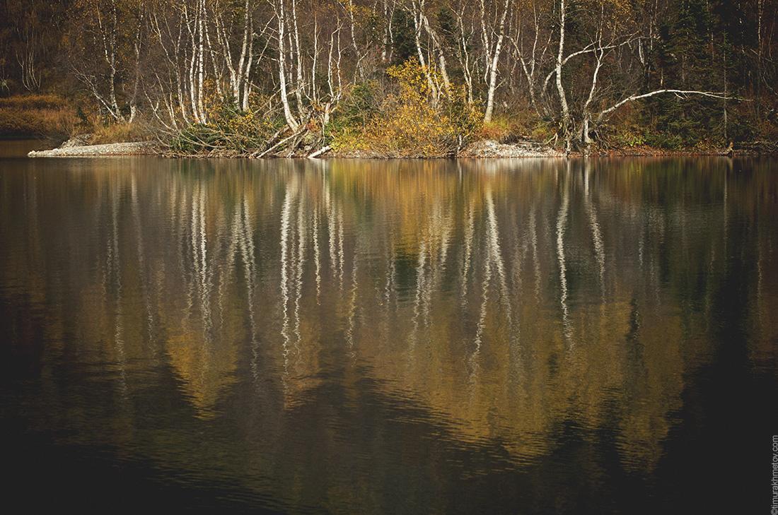 Озеро Кардывач, отражение деревьев