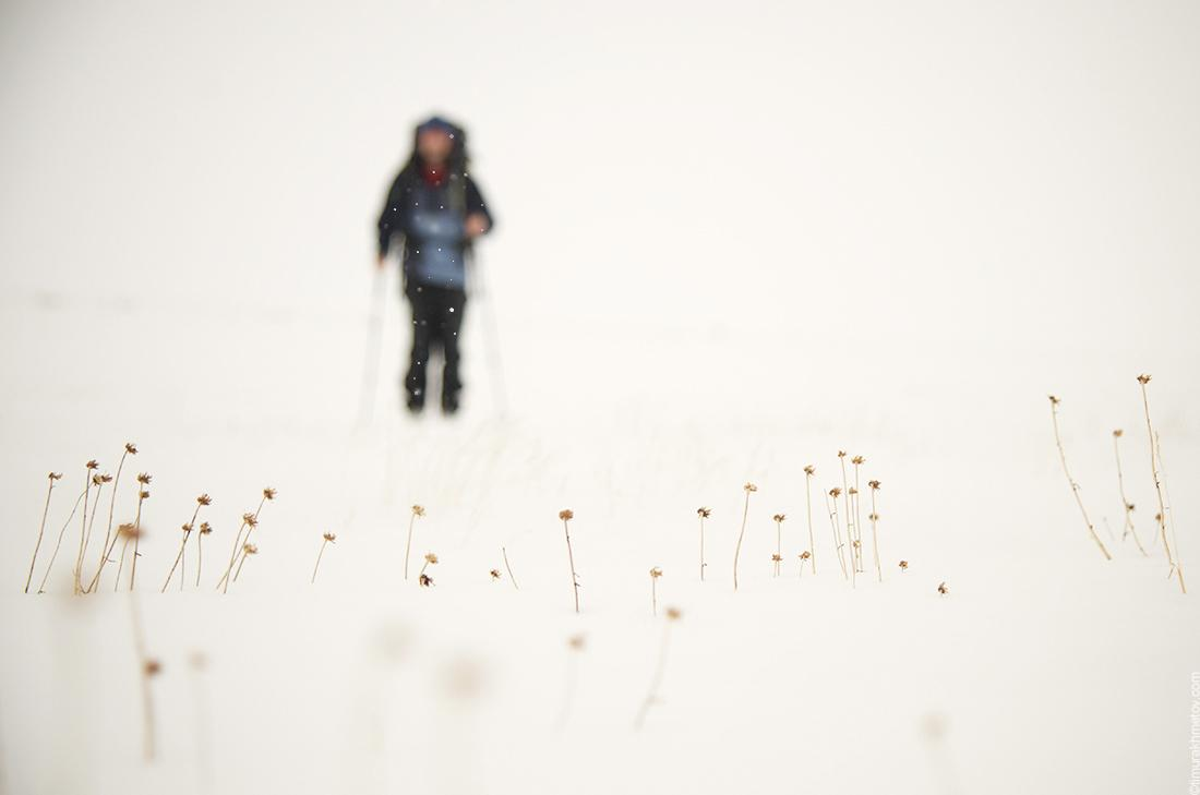 Лыжное путешествие по Чукотке
