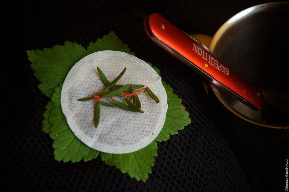 чай для похудения конкура
