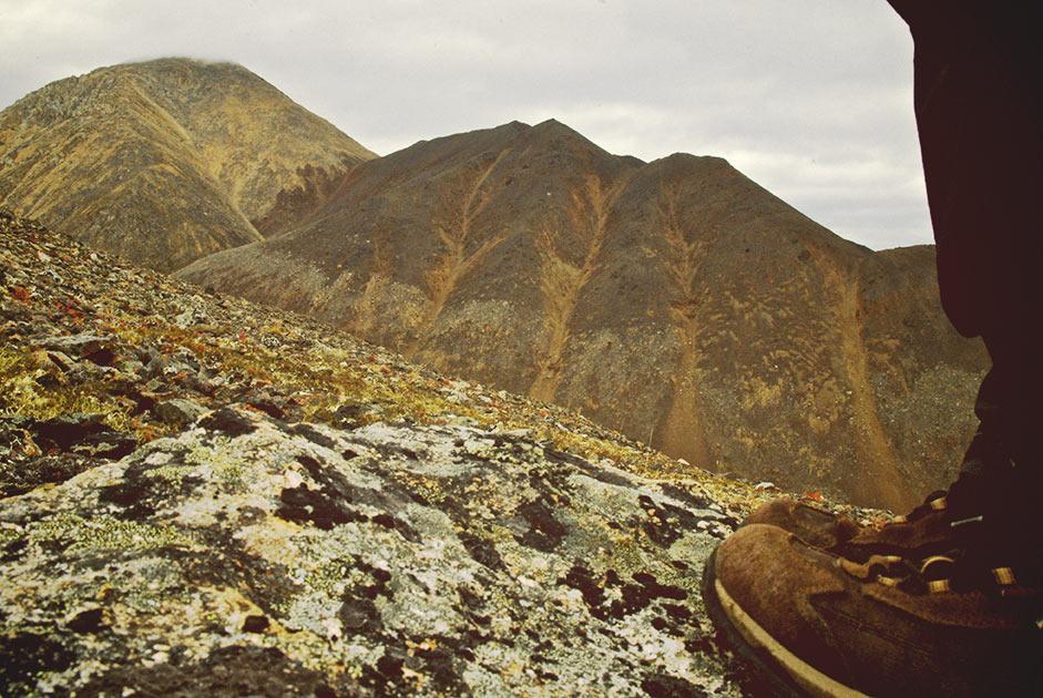 Чаантальский хребет