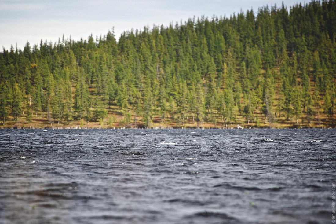 Волны на озере Лесное